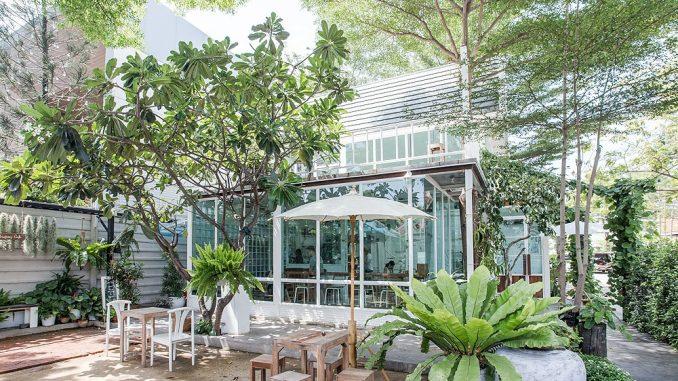 Café วิวธรรมชาติในกรุงเทพ
