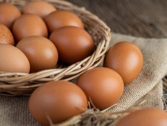 การเลือกซื้อไข่ไก่ให้สดใหม่